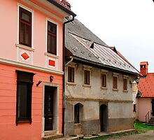 Historic Buildings in Skofja Loka 1 by jojobob