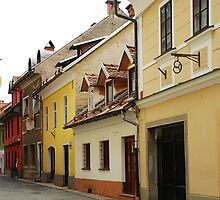 Historic Street in Kranj by jojobob