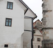 Historic Street in Skofja Loka 3 by jojobob