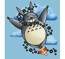 Flying On Top Totoro Photographic Print