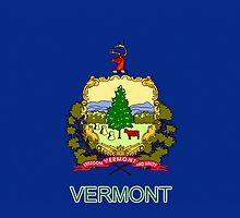 Smartphone Case - State Flag of Vermont V by Mark Podger