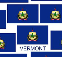 Smartphone Case - State Flag of Vermont VI by Mark Podger