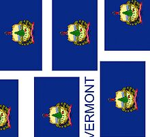 Smartphone Case - State Flag of Vermont X by Mark Podger