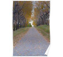 Fall Way  Poster