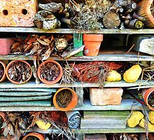 Heartbreak at the Insect Hotel.... by MikeShort