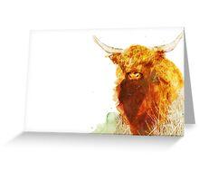 Highland Cow Greeting Card