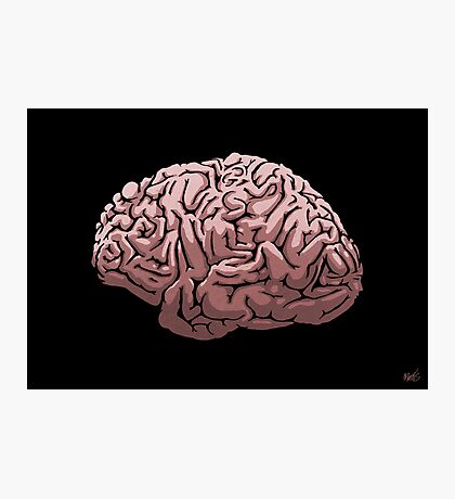 Human Brain Photographic Print