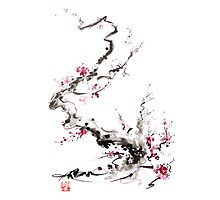 Sakura cherry blossom pink and red flowers tree watercolor original ink painting Photographic Print