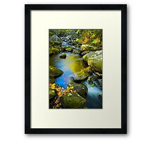 Middle Saluda River Fall  Reflections Framed Print