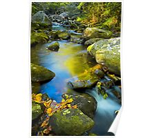 Middle Saluda River Fall  Reflections Poster