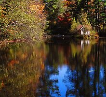 Autumn at the Swan House by PineSinger