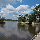 Tomoka Park by caybeach