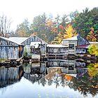 Autumn Within by Richard Bean