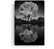 Zen Tree Canvas Print