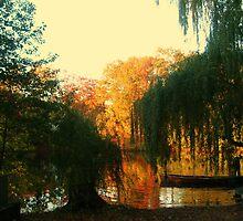 On Golden Pond, Sleepy Hollow New York, USA by Jane Neill-Hancock