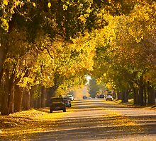 Saskatchewan Avenue by Roxanne Persson