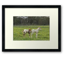 Are you sure we have the same dad? Framed Print