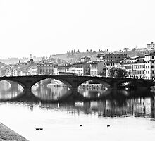 The River Arno by Daniel Fisher