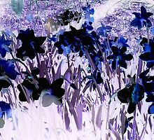 Blue Daffodils in Winter by VibrantDesigns