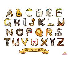 Cat Alphabet Photographic Print