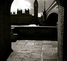 Houses of Parliament by TinyDino