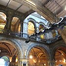 NATURAL HISTORY MUSEUM LONDON by gothgirl