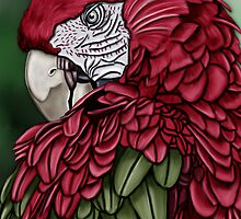 red parrot by karen sheltrown