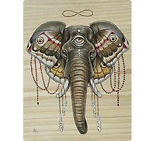 Flight of the Elephant Photographic Print