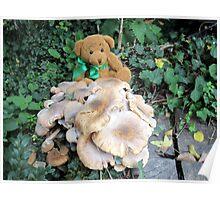 teddy bears picnic Poster