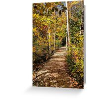 Grafton Notch state Park, Maine Greeting Card