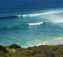Bells Beach - catching a wave by imaginethis