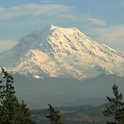 Mount Rainier From The Northwest by Dave Davis