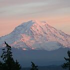 Mount Rainier At Sunset by Dave Davis