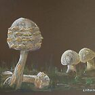 Fungi II by Linda Ridpath