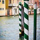 Green and Blue poles in Venice by SteveHphotos