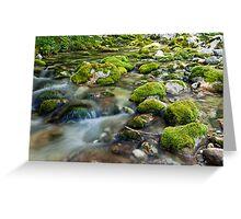 Mountian Creek Greeting Card