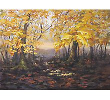 """Autumn Forest"" Painting Photographic Print"