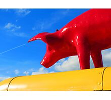 #pigs might fly Photographic Print