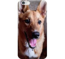 Carolina Dog iPhone Case/Skin