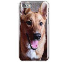 Carolina Dog iPhone Case/Skin