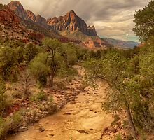 The Watchman by Bendinglife
