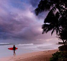 Pipeline Surfer 15 by Alex Preiss