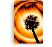 Solar Halo Canvas Print