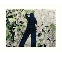 Shadow Over The Pumpkin Patch Art Print