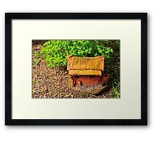 the cabin in the woods Framed Print