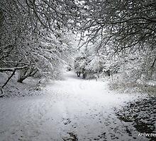 Snow 2o11 by skaterfromglos