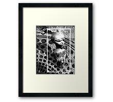 urban shaman Framed Print