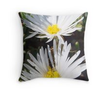 Wit in Namakwaland Throw Pillow