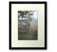 Nature's Engineers 2 Framed Print