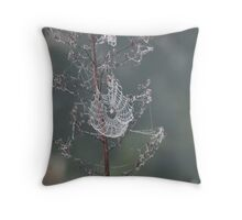 Nature's Engineers 8 Throw Pillow